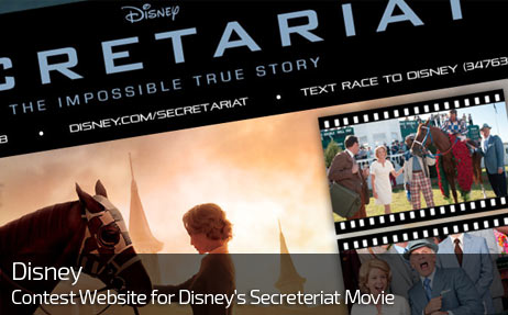 Web Design for DISNEY