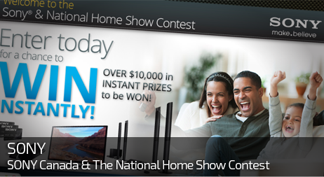 Web Design for SONY